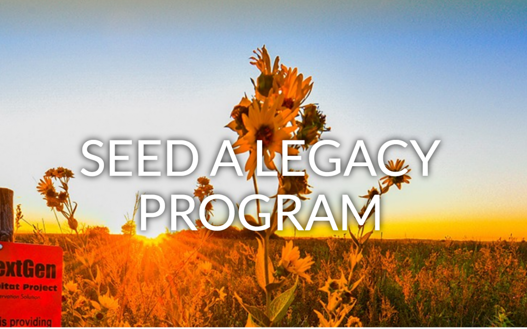 Bee and Butterfly Habitat Fund's Seed a Legacy Program Accepting Applications through March