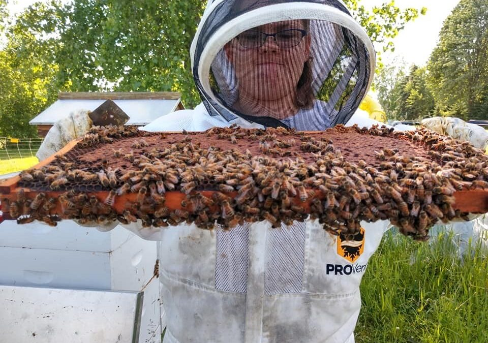 WHPA 2021 Youth Beekeeper Scholarship Program Begins 2nd Year